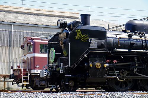 DSCF4206.jpg