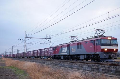 DSCF5335.jpg