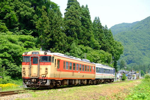 DSCF9592.jpg