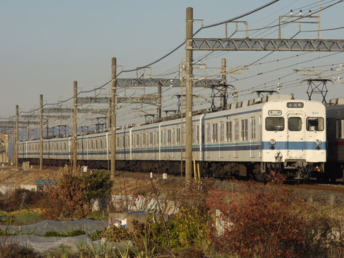 P1140011.JPG