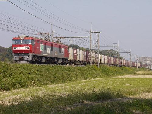 P1190500.JPG
