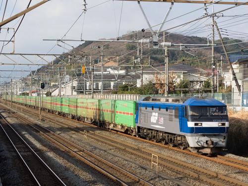 P1291852.jpg