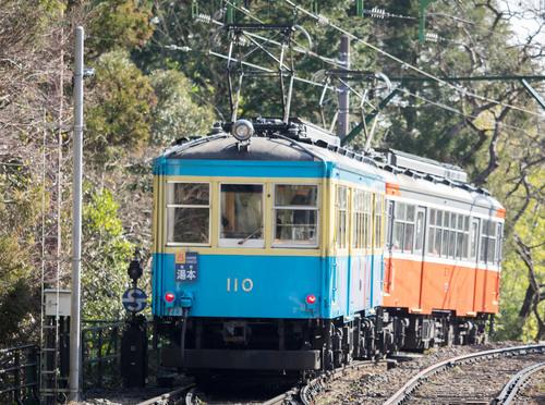 P1291940.jpg