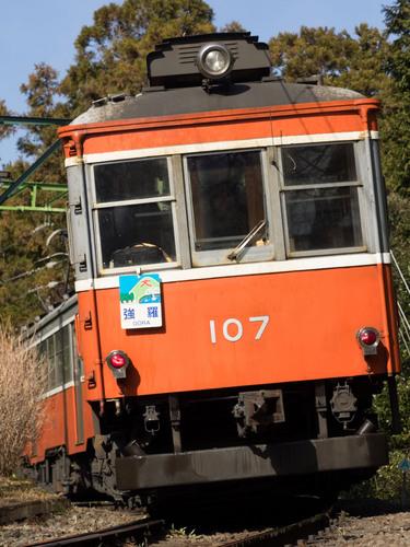 P1291987.jpg