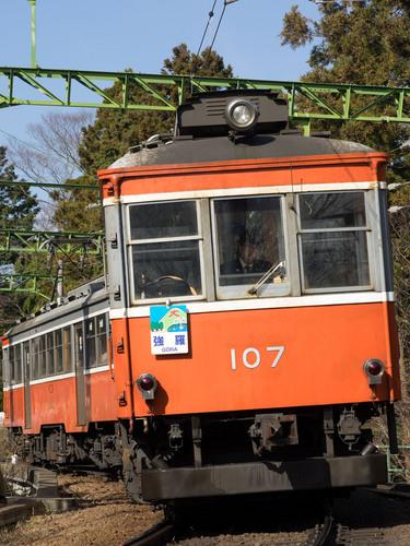 P1292040.jpg