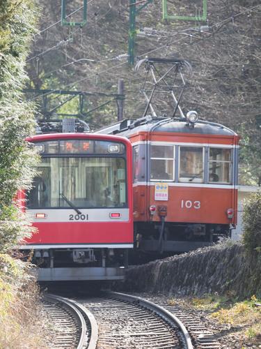P1292224.jpg