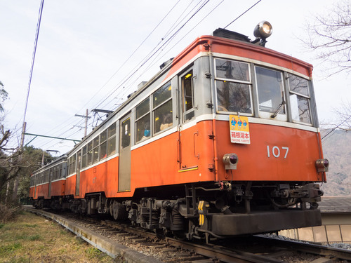 P1292451.jpg