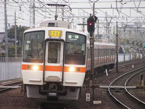 P3050998.jpg