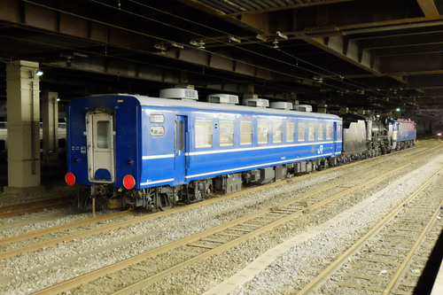 DSCF2881.jpg