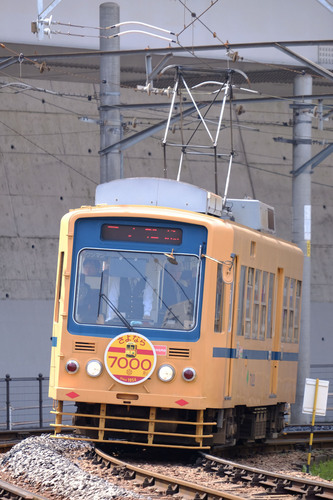 DSCF3271.jpg