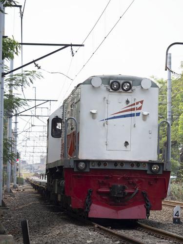 P8047351.jpg