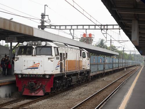 P8047701.jpg